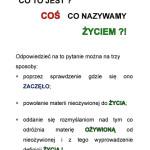 z_Strona_02