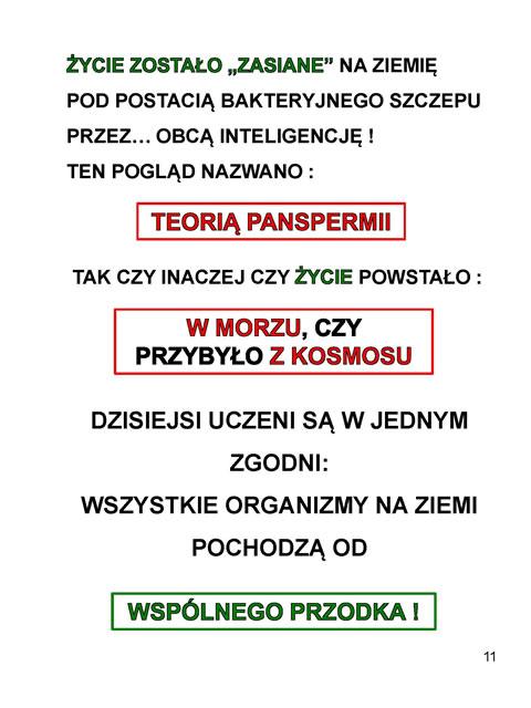 z_Strona_11