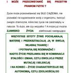 z_Strona_19