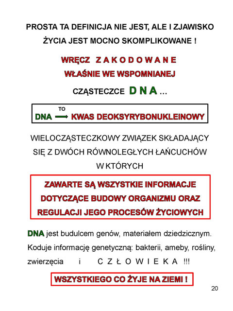 z_Strona_20