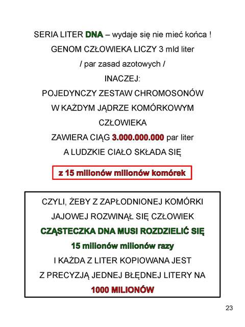 z_Strona_23