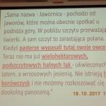 jawornica