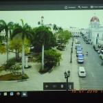 ulica palmy